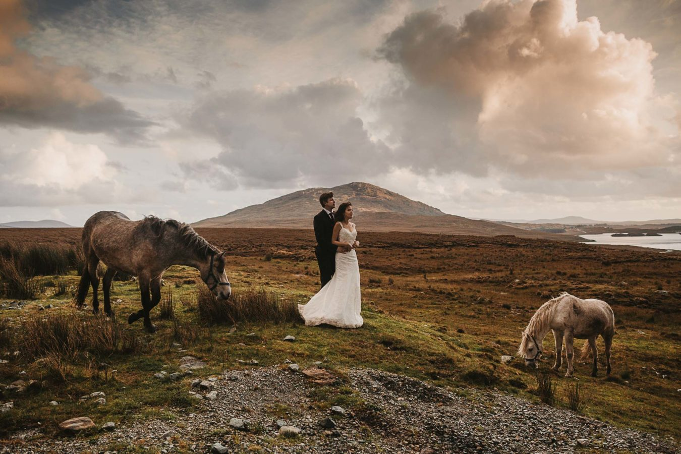 PLANNING FOR ELOPEMENTS IN IRELAND, connemara Ponies surround the couple as they hold each other, organized but their wedding planner Ireland