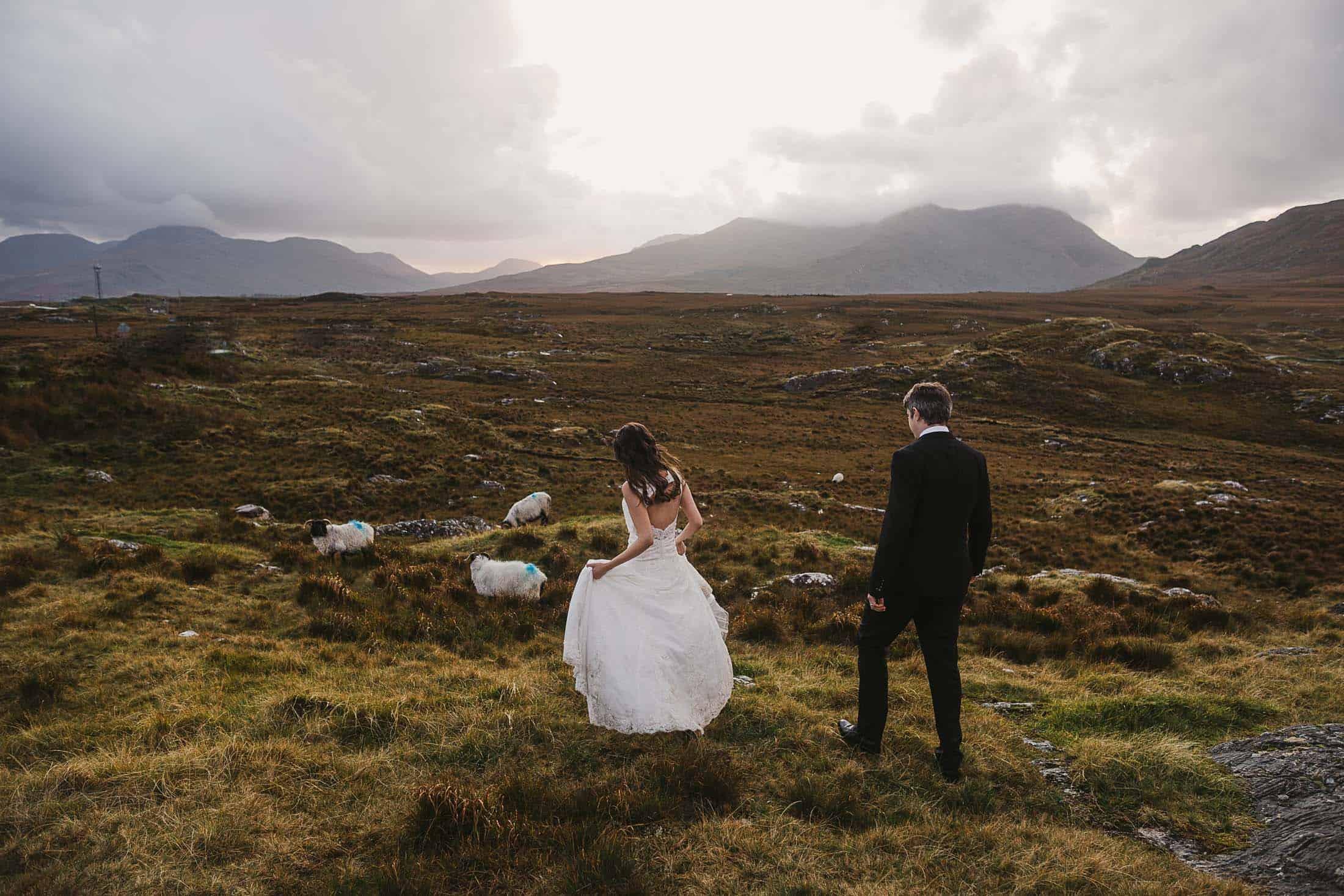 Destination Weddings Ireland Connemara Sheep