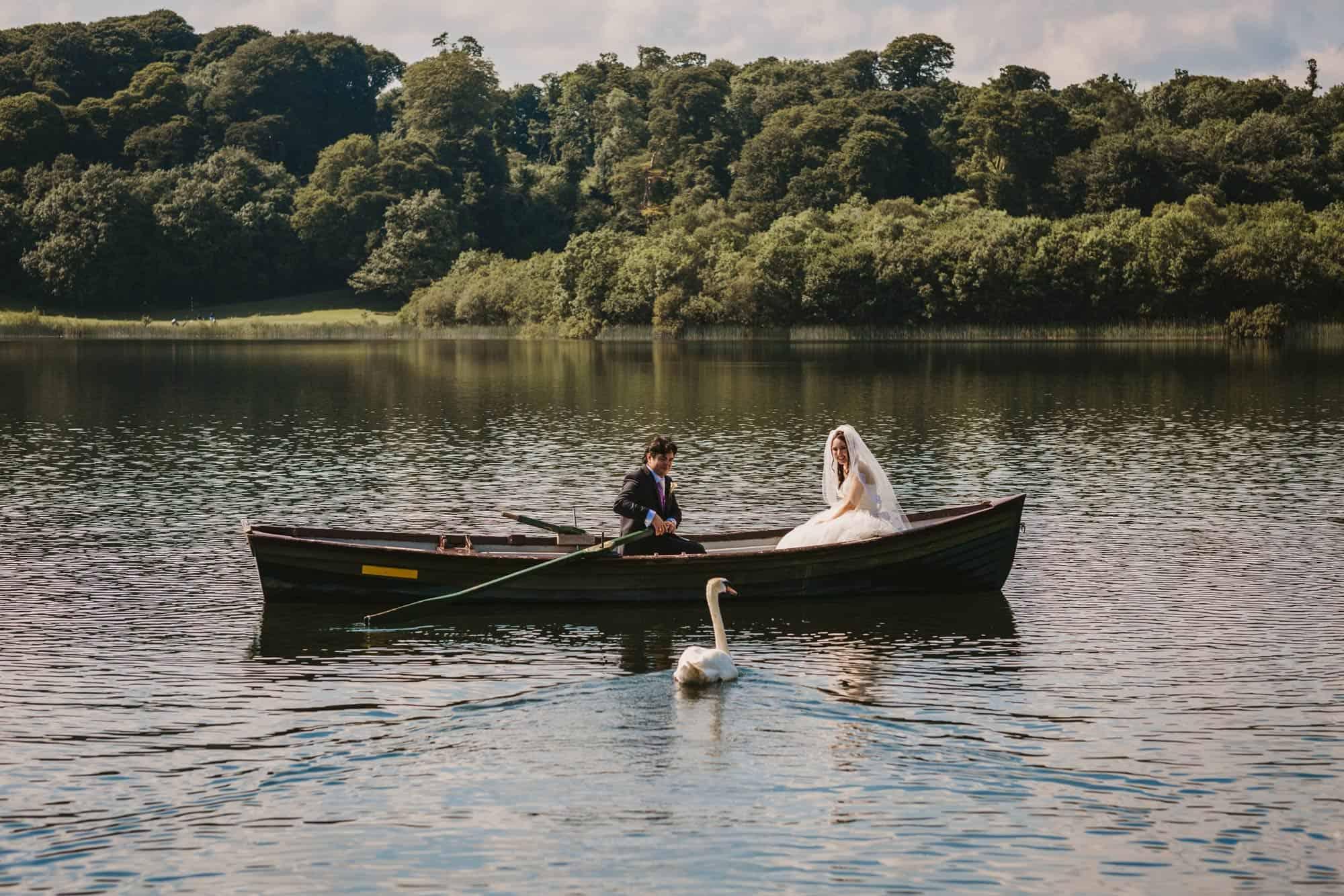 Dromoland Castle Ireland, swan beside the boat