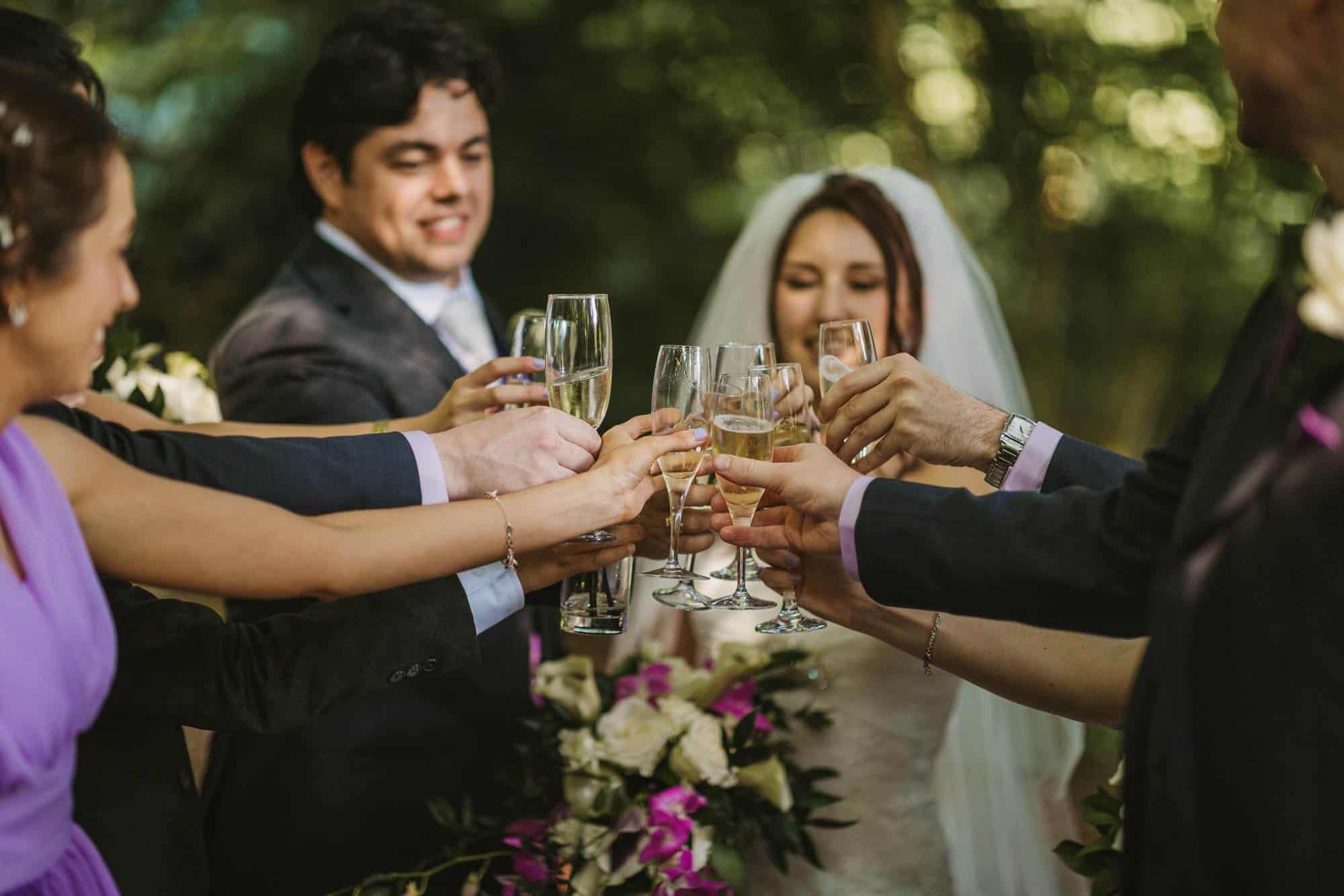 wedding party toast, Dromoland Castle Ireland