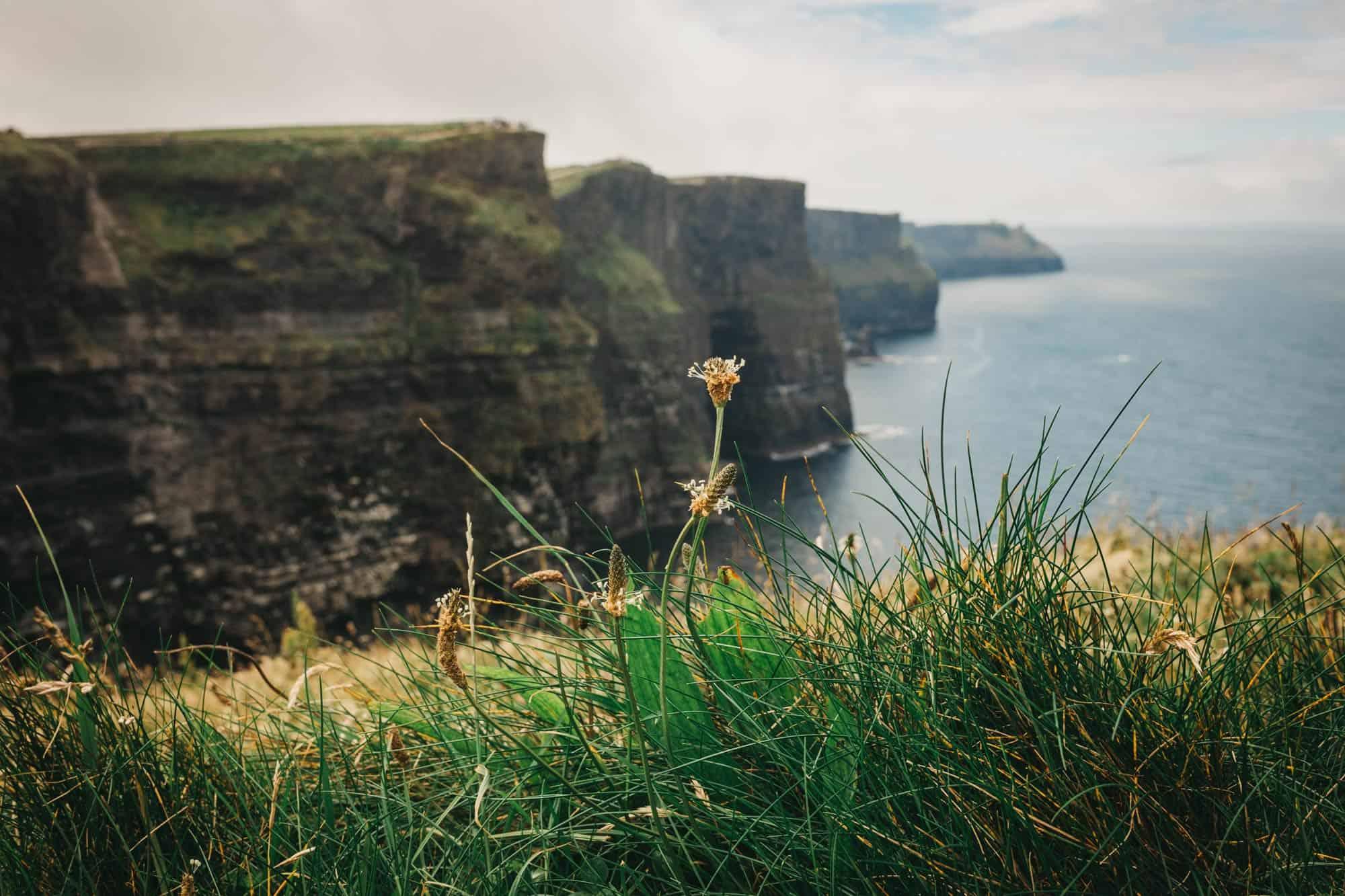 Proposal shoot Ireland Cliffs of Moher